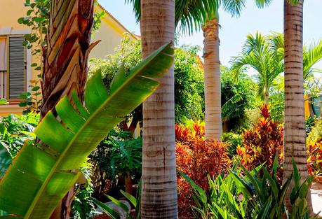 jardinería hotelera