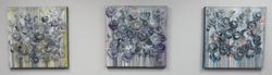 Shades of Grey Blooms Series