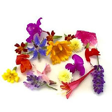 Wholesale Edible Flowers