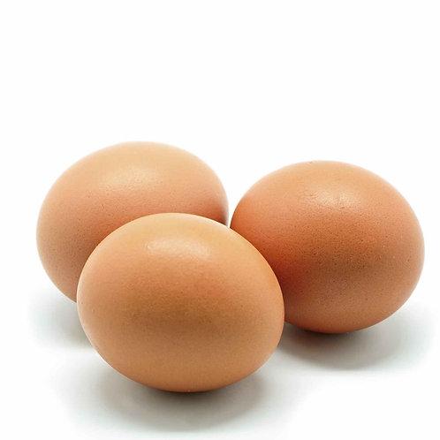 Cage Free Jumbo Eggs 800g 1 Doz