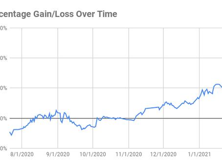 Monthly Portfolio Update: Jan 2021 Massive Crypto Bull Run