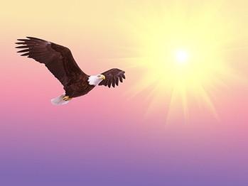 解脱-束縛からの自由