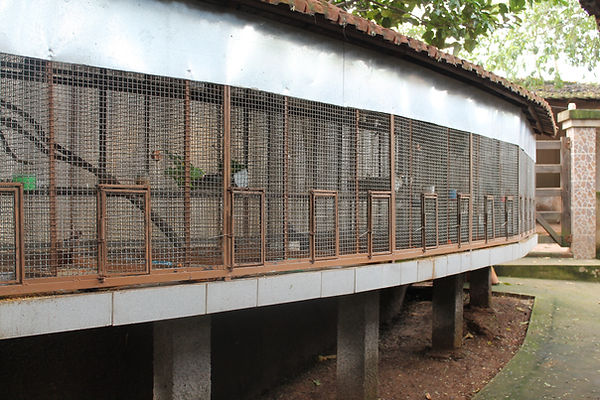 recinto dos tucanos