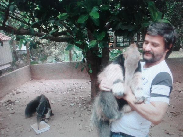 Amor e cuidado pelos animais