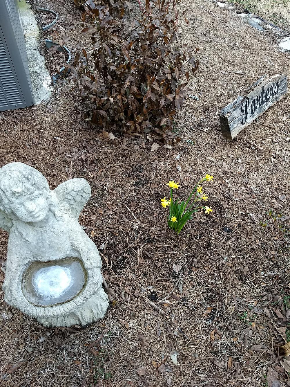 baby memorial or angel garden