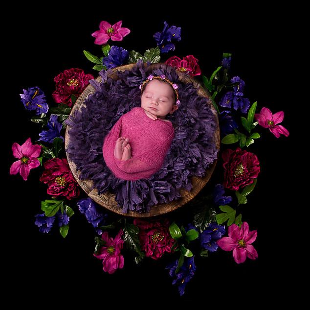 newborn photography galway 54