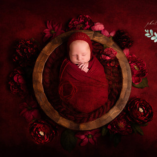 newborn photography  (65).jpg