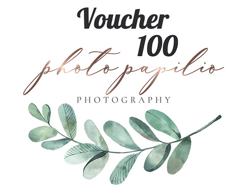 Photo Papilio 100