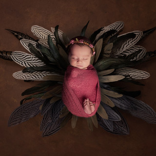 newborn photography galway 14