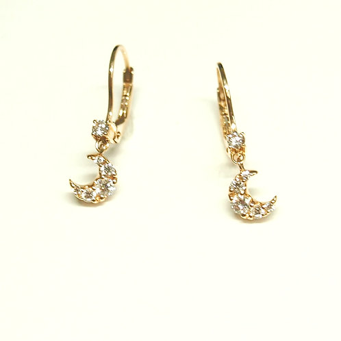Crescent Hook Earrings (Pierced)