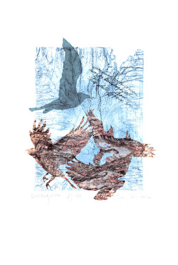 """mourning doves driven away by building's fall leave two white eggs up here         Solarplate Etching with Chine Collé 12"""" x 9"""" 30.4 cm. x 22.8 cm."""