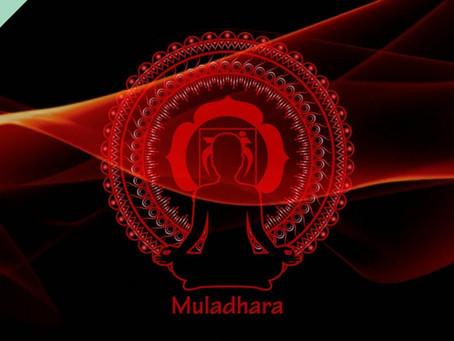 O 1º Chakra: Chakra Muladhara