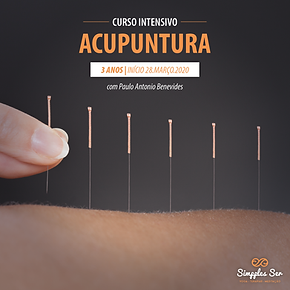 worshop-acupuntura_Prancheta 1.png