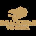 Brand-Logos-Gold-15.png