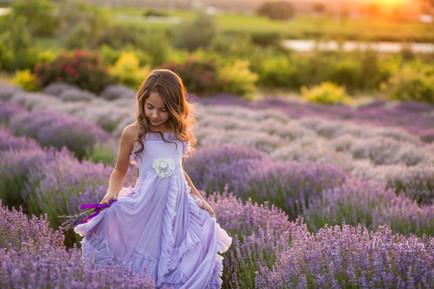 Lavender-17.jpg