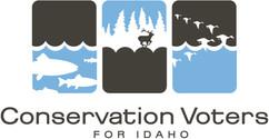 CVI color logo final copy (1).jpg