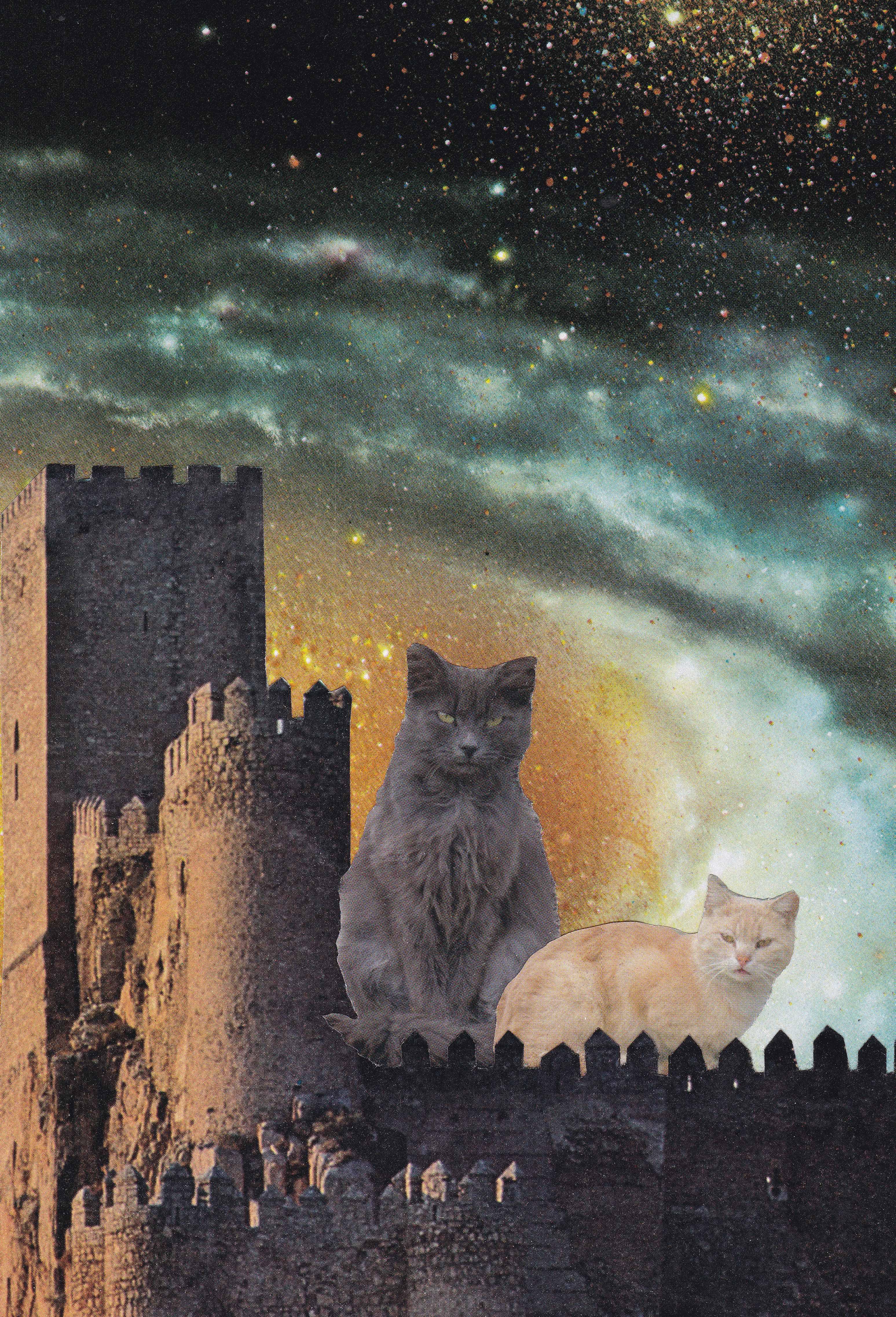 Catsle