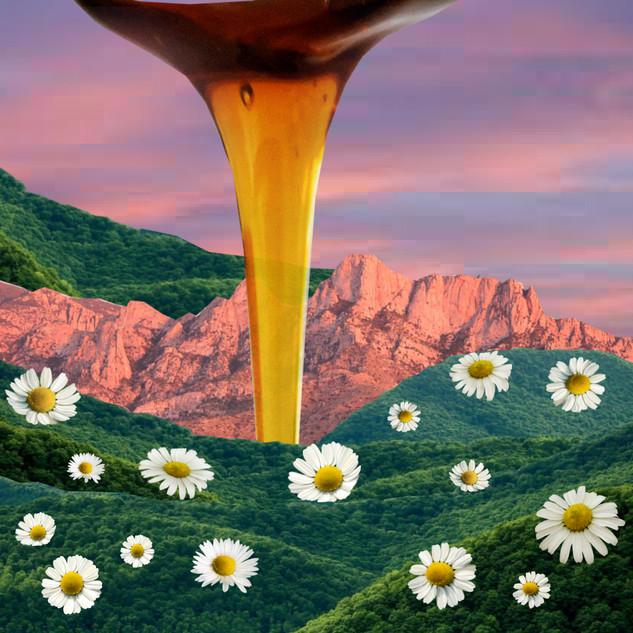 Honey in the Cracks