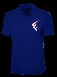 Polo Blue Shirt.png