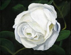 """""""White Rose"""" by Alfred Banks"""