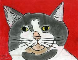 """Happy Cat"" by George Zuniga"