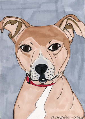 Pretty Eyed Pup by Jacqueline Cousins-Oliva
