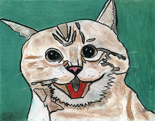 """""""Excited Cat"""" by George Zuniga"""