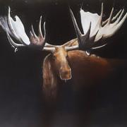 The Elk 2017