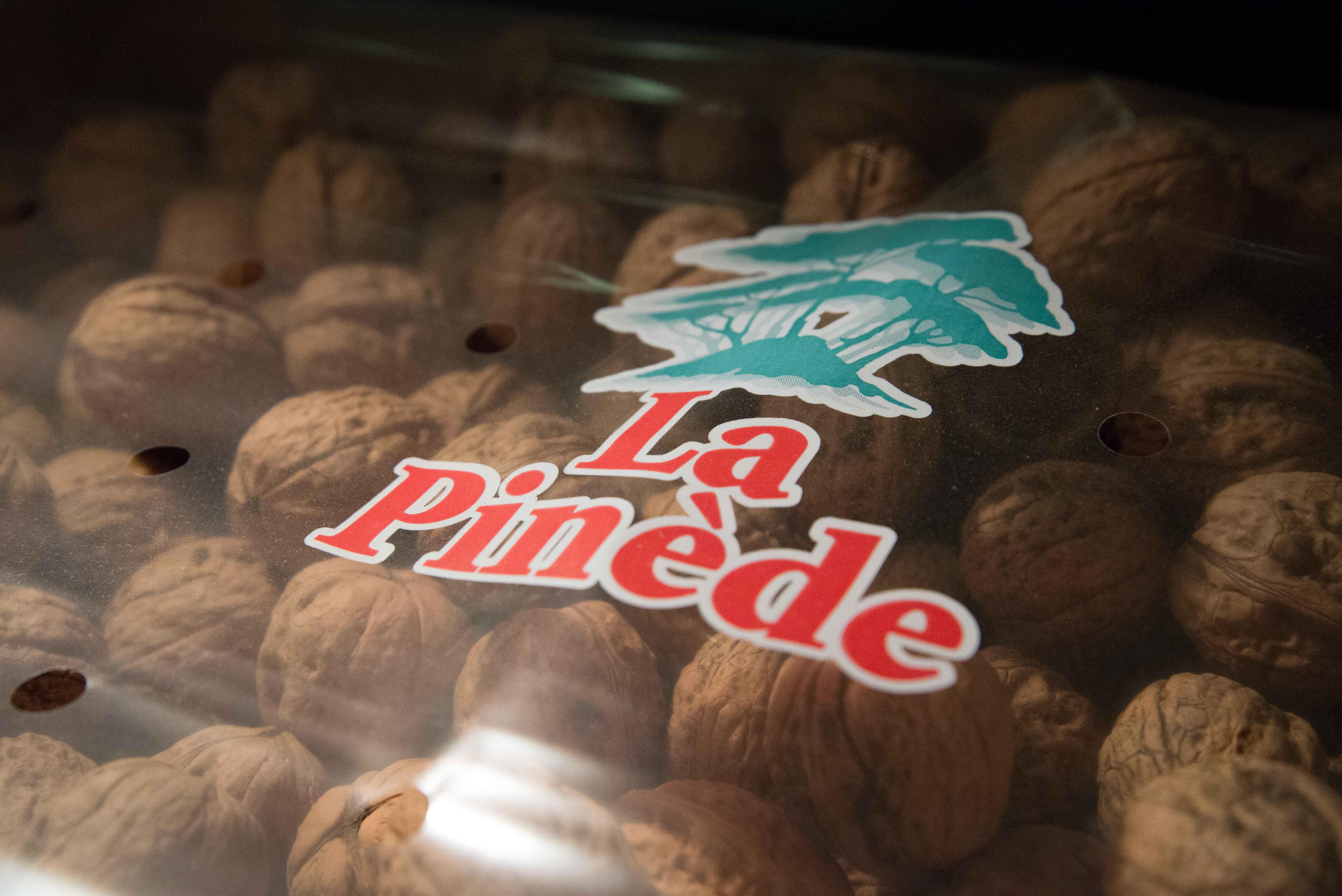 La Pinède - Nuts