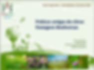 4 Pastagens Biodiversas.png