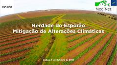 6_Herdade_do_Esporão_-_Mitigação_de_Alte