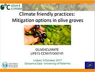 5 Mitigation options in olive groves.png