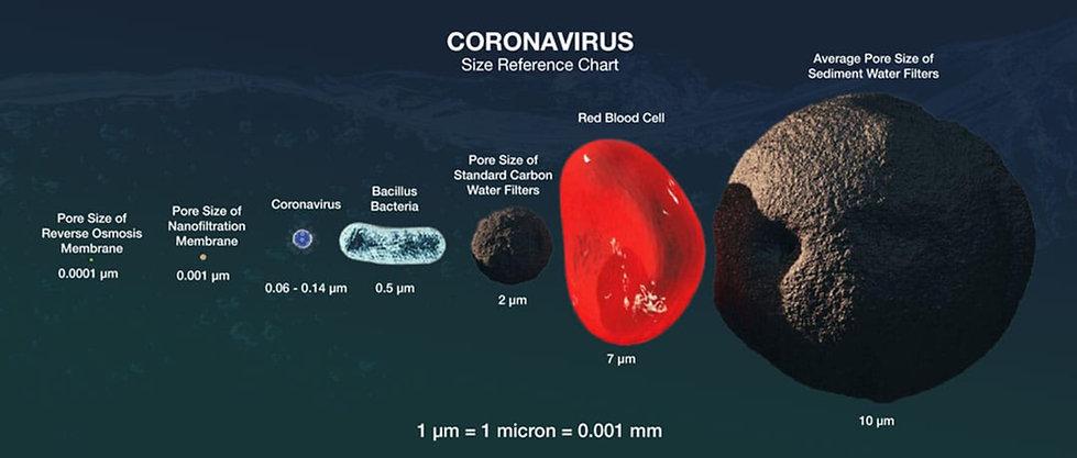 coronavirus-size-comparison.jpg