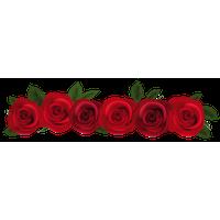 8283-roses-rose-garland-frame-kid-transp