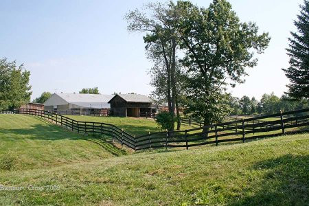 Back View of the Property