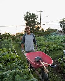 Full-Time Gardener Pack