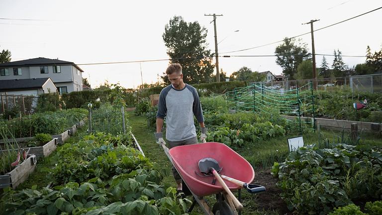 Master Gardener November 9th, 2021: Permaculture & Ecofriendly Gardening