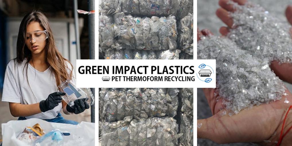 Green Impact.png