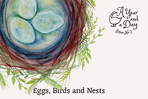 Issue 1: Eggs, Birds and Nests