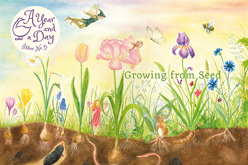Issue 5: Growing From Seed