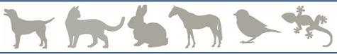 Consultations - examens ophtalmoliques pour animaux_Ophtovet-Méditerranée