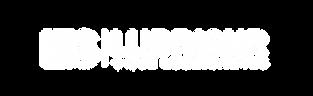 logo lubrisur ET2 - con transparencia bl