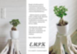 EMPK1b.jpg