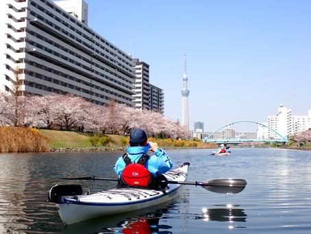 2021年度東京水路桜シーズンは終了しました