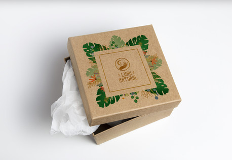 Cardboard Box PSD MockUp copiar 2.jpg