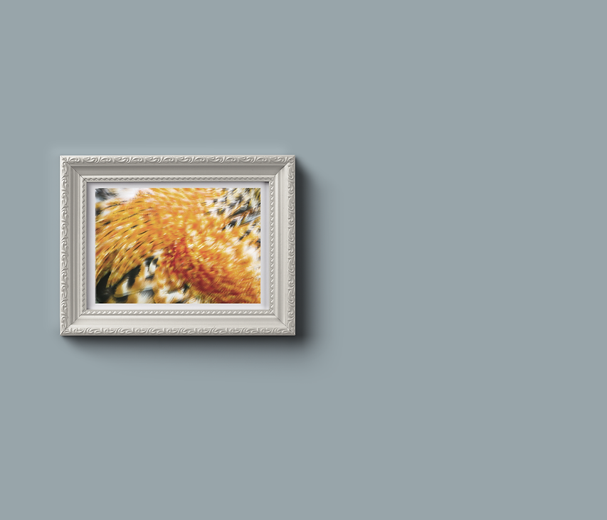 Ornamental-Frame-Mockup copiar.png