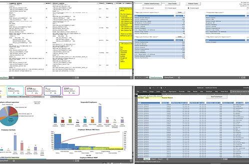 HCM/HR: Dashboard and Reporting Framework
