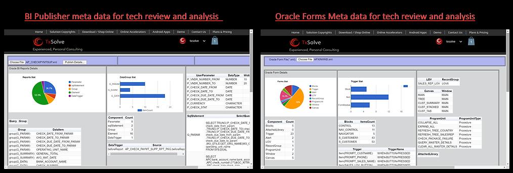 BI_PUB_ORACLE_FORMS_META_DATA_REVIEW.png