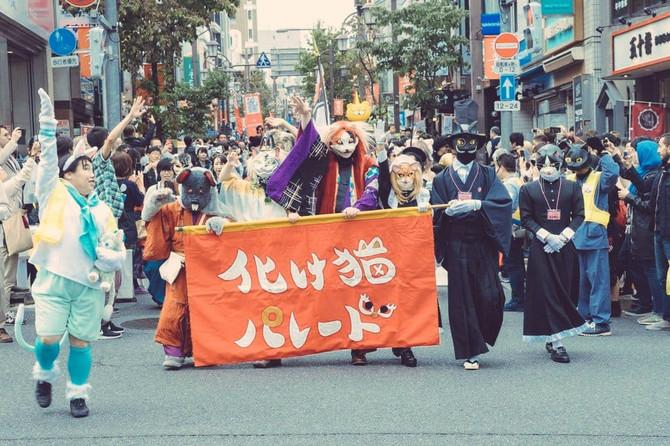 神楽坂 化け猫フェスティバル2019