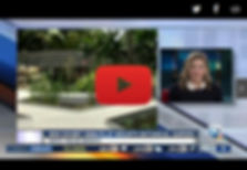 Screenshot WPTV.jpg